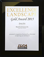2015 ILCA GOLD Award for Landscapin Homer Gleng